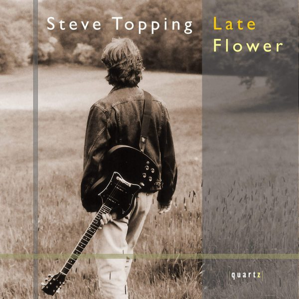 Steve Topping (guitar)